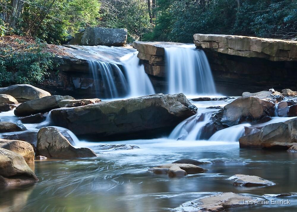 Deckers Creek by LeeAnne Emrick