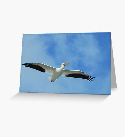 If I Could Fly With Them Greeting Card
