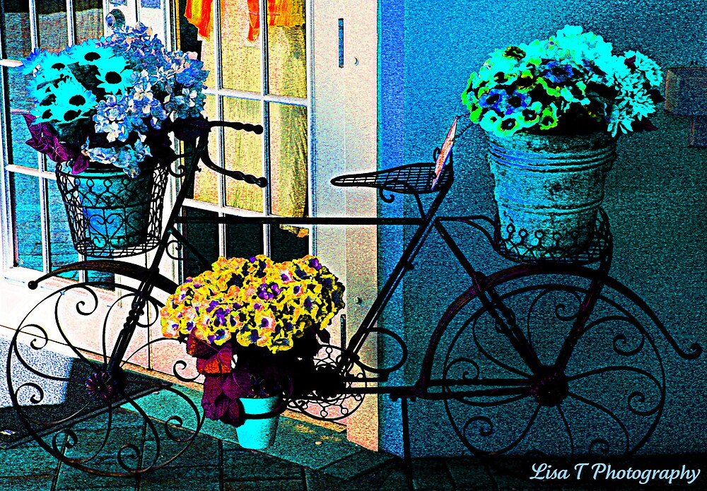 Bicycle by Lisa  Trans