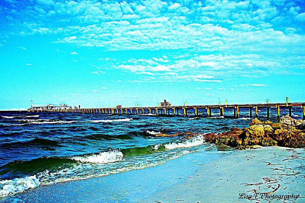 Seashore by Lisa  Trans