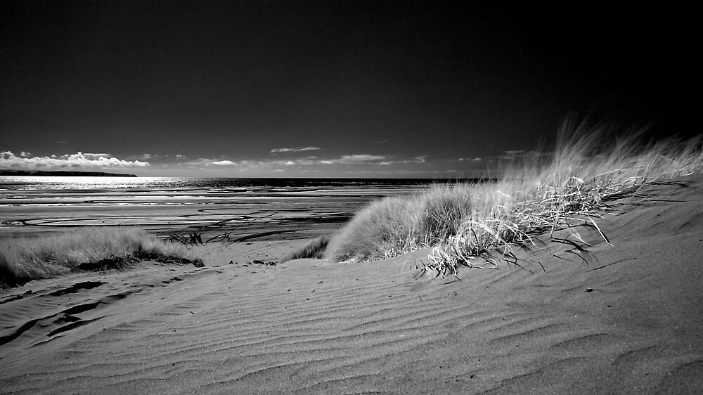 Saunton Sands, North Devon by James  Monk