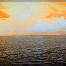 Horizon by Lisa  Trans