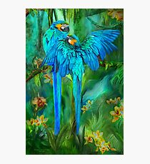 Tropic Spirits - Gold and Blue Macaws Photographic Print