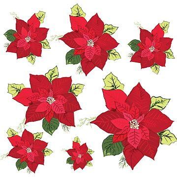 Christmas Flowers  by Manitarka