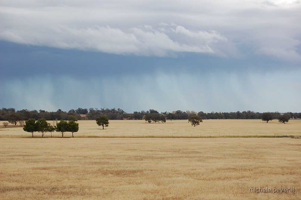 storm over paddock cookamidgera by michele peverill