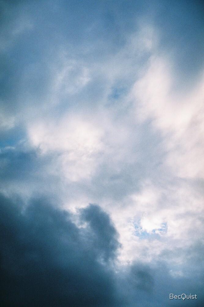 The garden path- cloud 2 by BecQuist