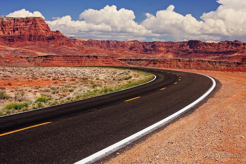 Arizona Drive by Julia Washburn