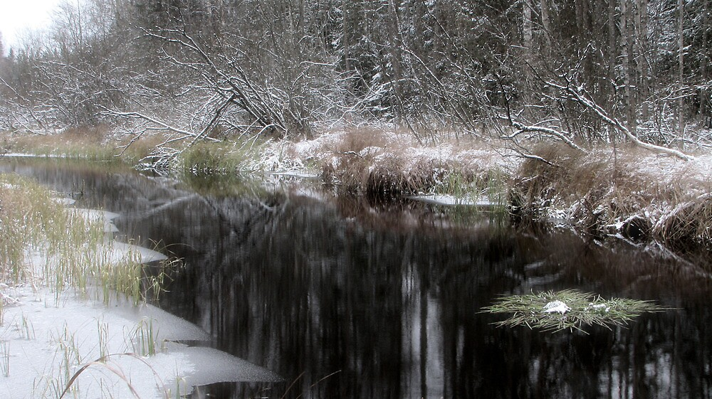 5.11.2009: Stream and First Snow by Petri Volanen