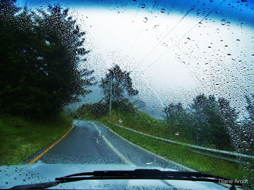 Rainfall in Oregon by Diane Arndt
