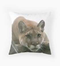 M E S M E R I Z E D Throw Pillow