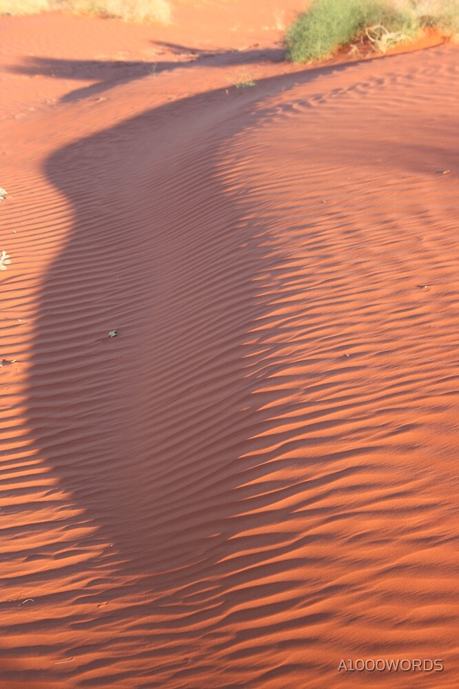 Dune shadow... by A1000WORDS