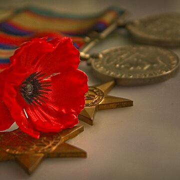 Remembrance Day by RosalieDale