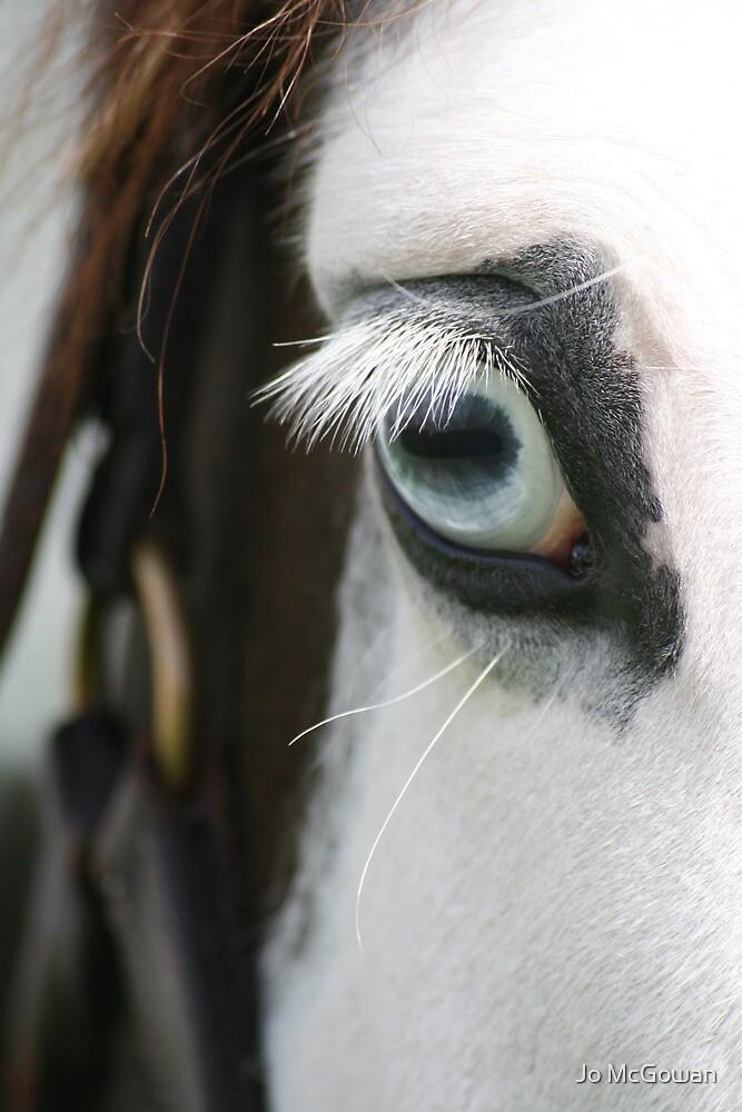 Equine Eye by Jo McGowan
