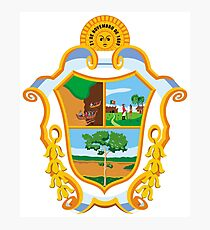 The Coat of Arms of Manaus Photographic Print