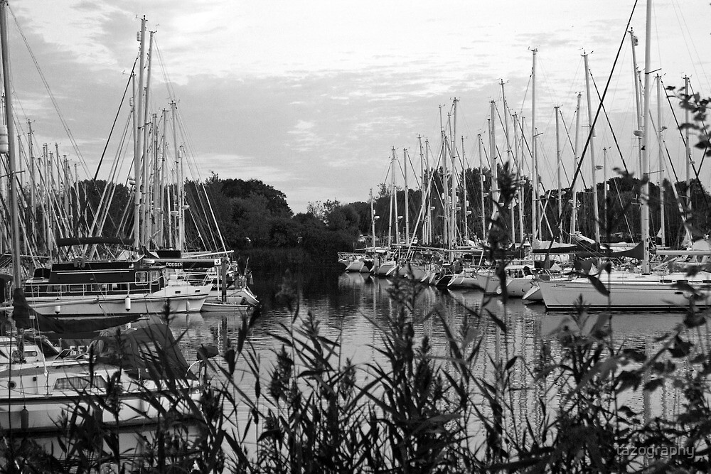 chichester marina black and white . by tazography