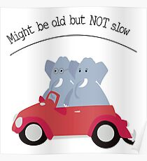 Funny elephants in red beetle car Poster