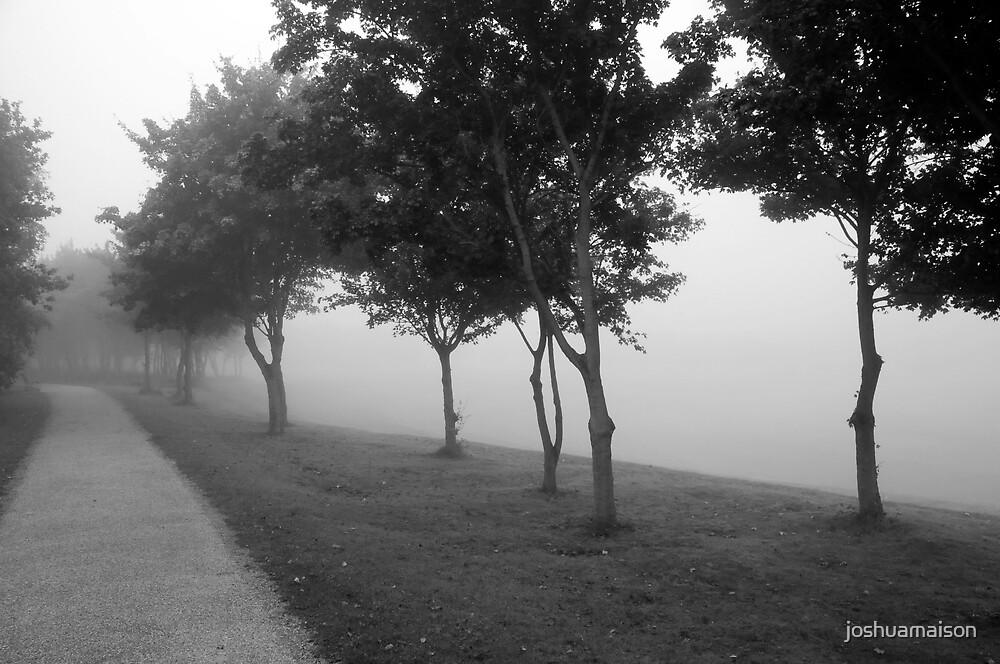 Foggy Morning by joshuamaison