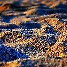 Golden sand by DEJAN ALEKSOVSKI