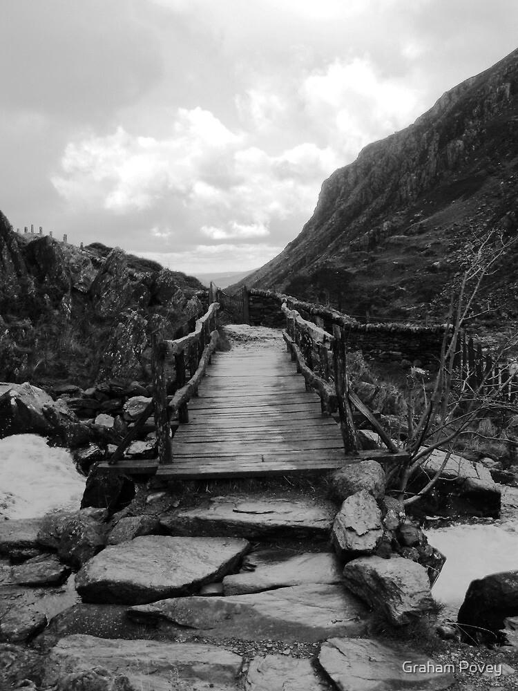 Bridge to the Wild by Graham Povey