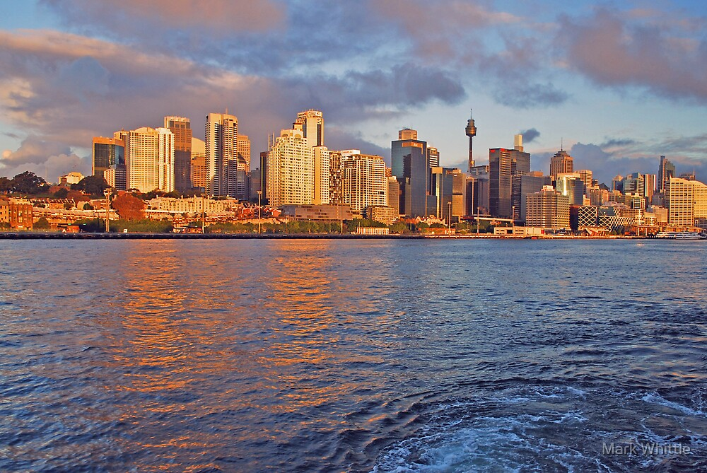 Sydney City in the Late Afternoon by Mark Whittle