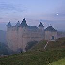 Evening fog over Khotyn castle by Elena Skvortsova