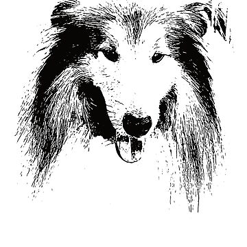 Collie Face Design - A Collie Christmas Gift by DoggyStyles