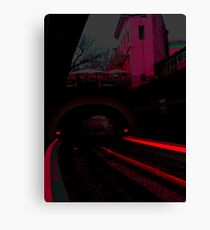 Red-ily into the night Canvas Print