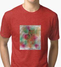 Picture cat Tri-blend T-Shirt