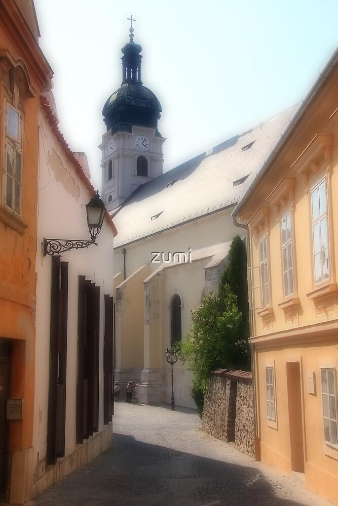Old city of Győr by zumi