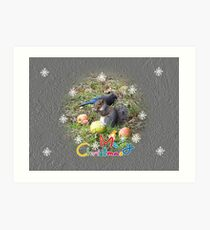 Squirrel And Steller Jay Merry Christmas Card Art Print