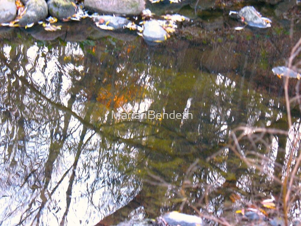 Orange Waters by MarianBendeth