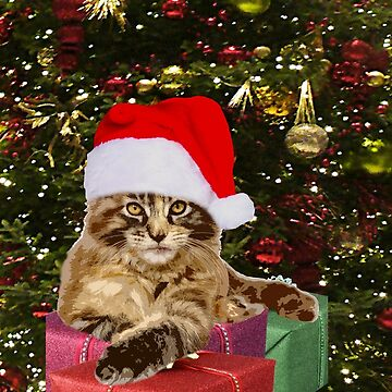 Maine Coon Cat Santa Gifts Christmas Tree, RBSSP by sandyspider