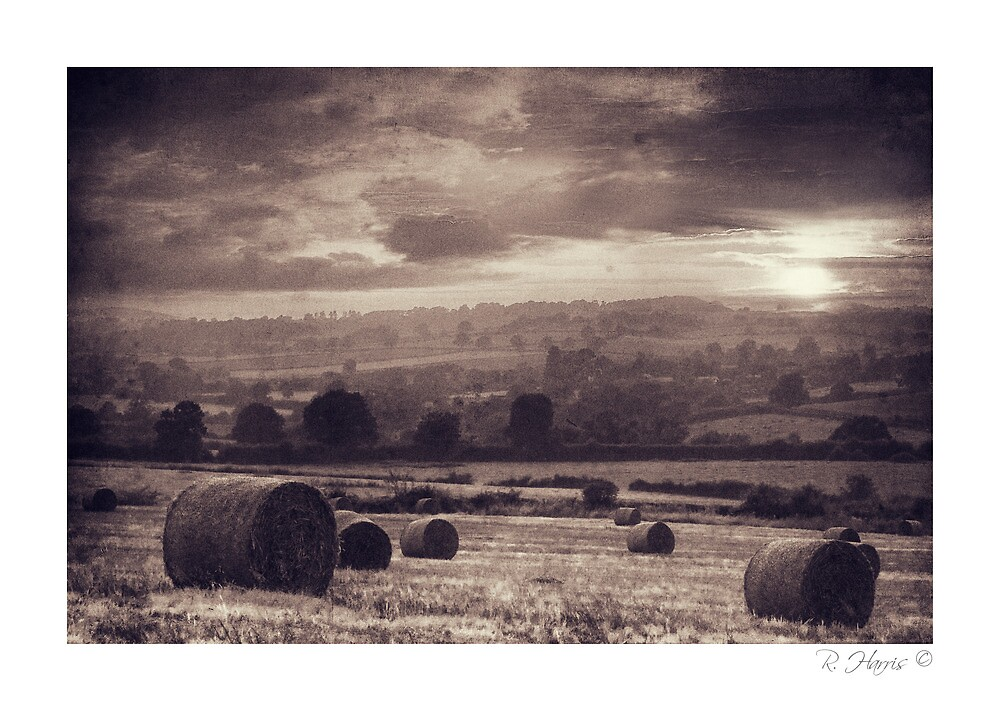 """Rolling Days - Homer, nr Much Wenlock"" by rharris-images"