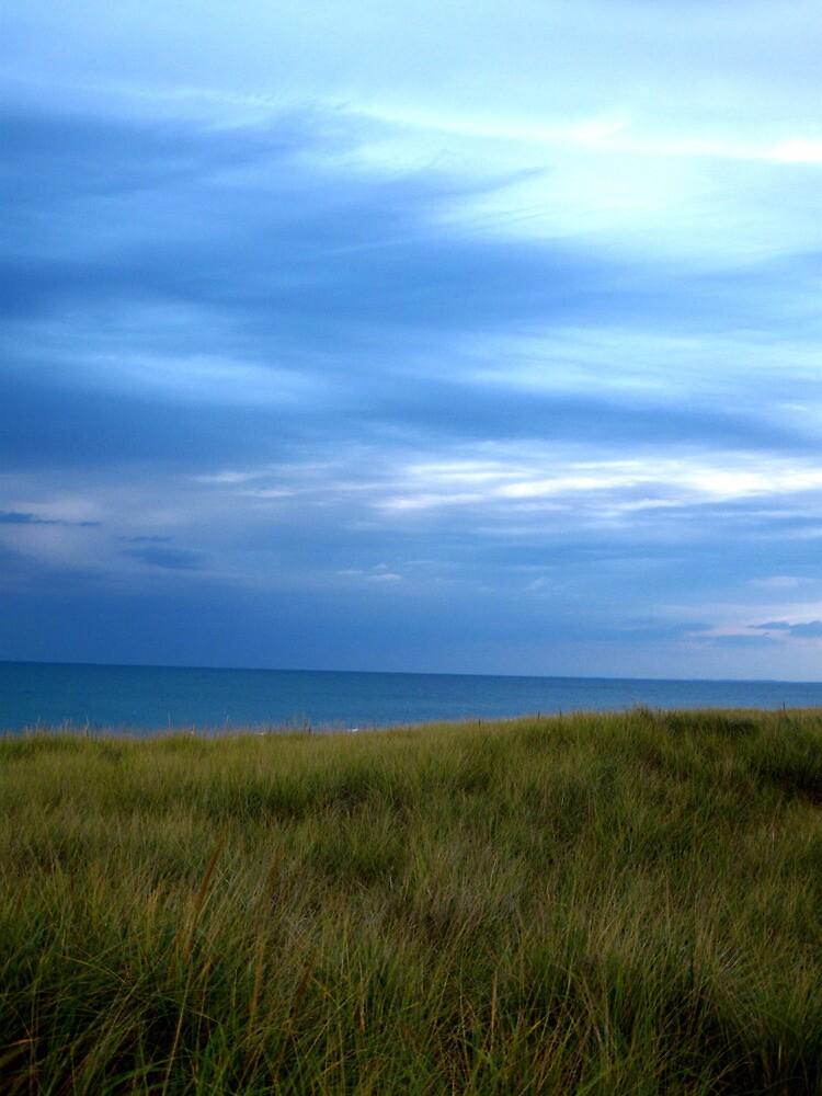 Lake Michigan # 3 by ryanjbolger