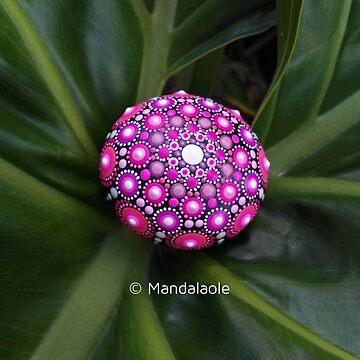Pink mandala stone 1 by mandalaole