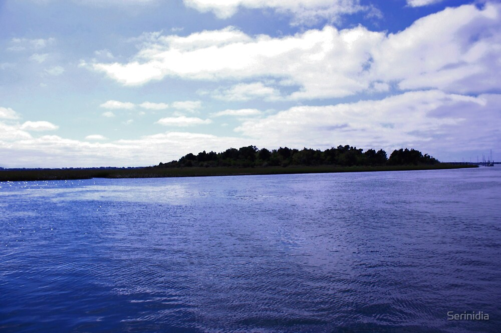 The island by Serinidia