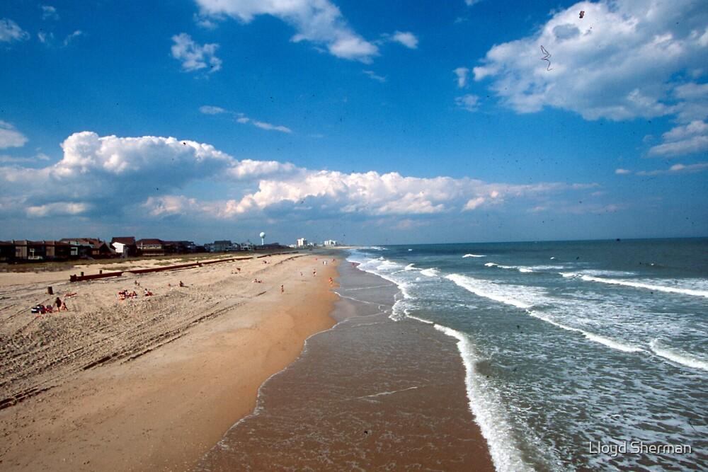 st augustine shoreline f.l.a u.s.a by Lloyd Sherman