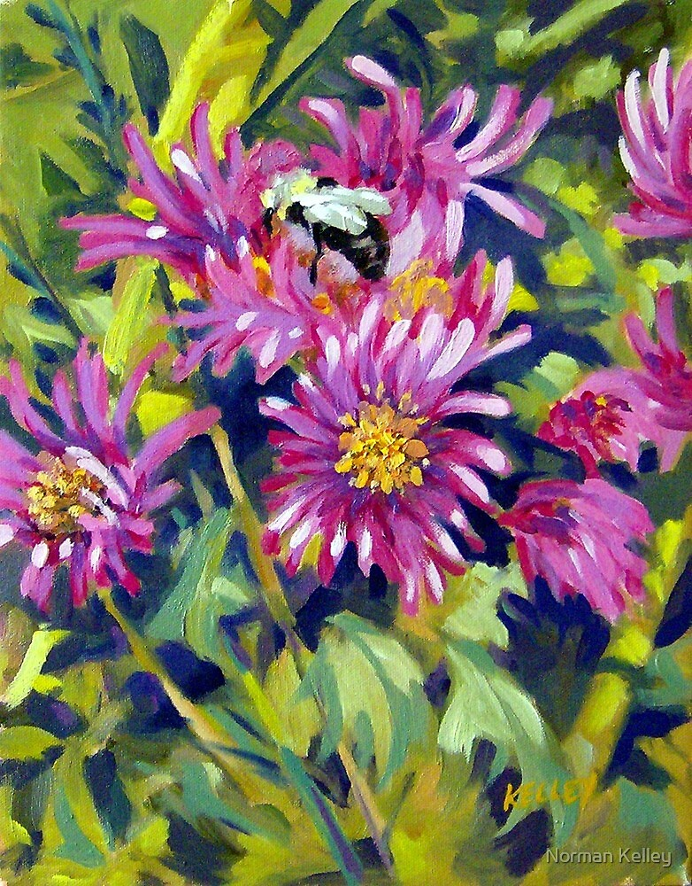 Wild Asters by Norman Kelley