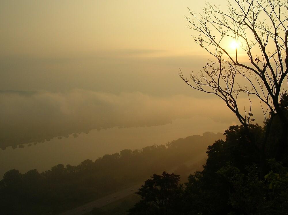 Foggy Morning by hmarg06