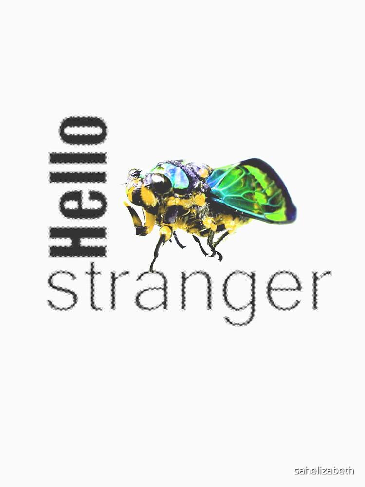 Hello Stranger by sahelizabeth