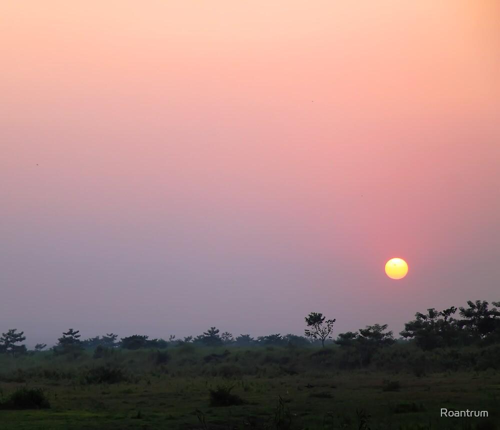 Chitwan Sunset by Roantrum