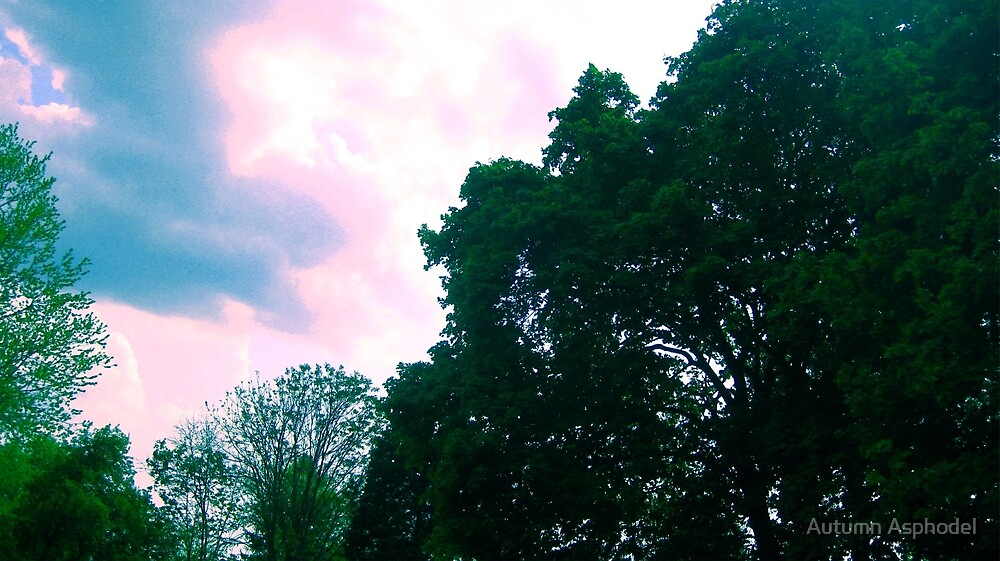 Trees and Colorful Sky Nature Scene by Autumn Asphodel