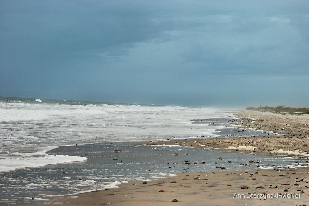 Approaching Storm by Ann Starzynski-McNeil