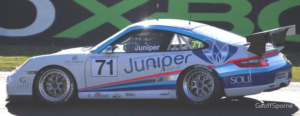 Jumpin Juniper by GeoffSporne