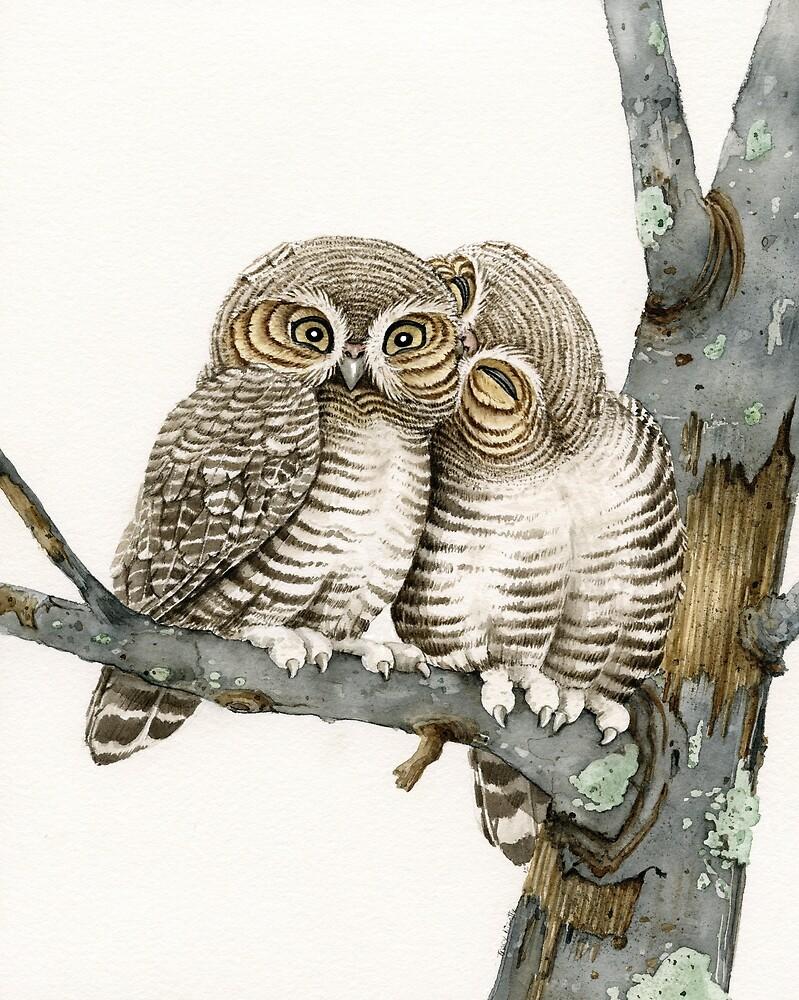 Owl Smooch by Tracy Lizotte