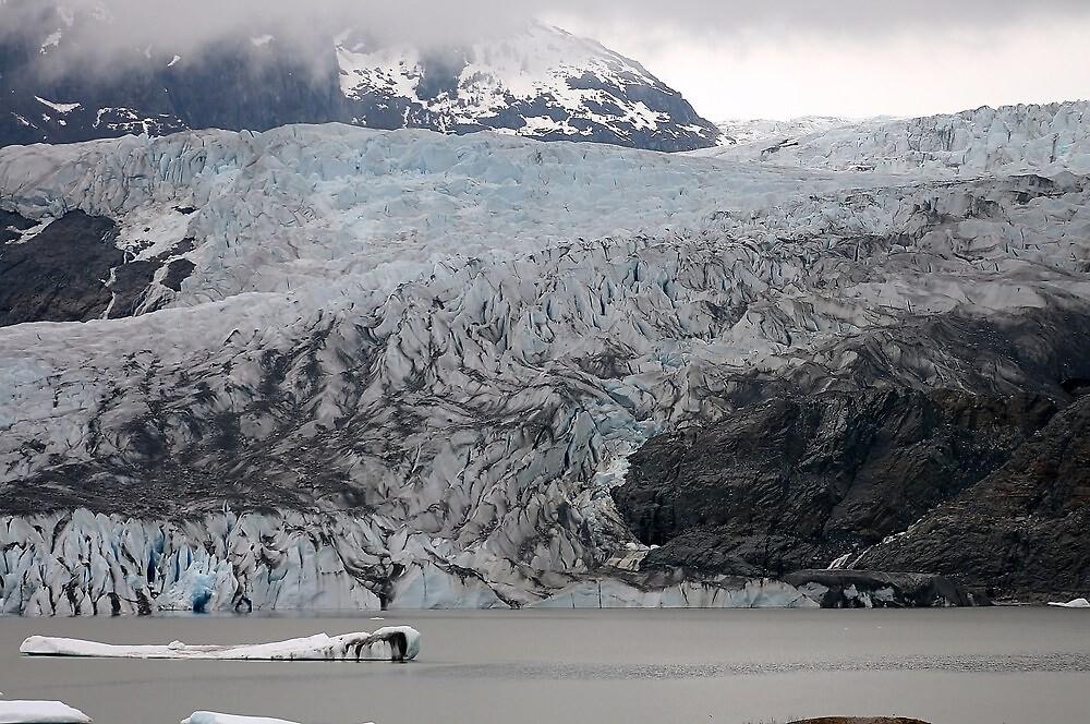 Mendenhall Glacier by DianaC