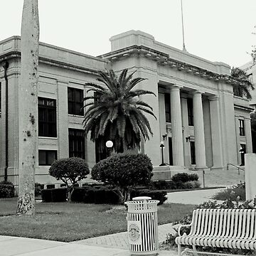 Lee County Courthouse by Michiale