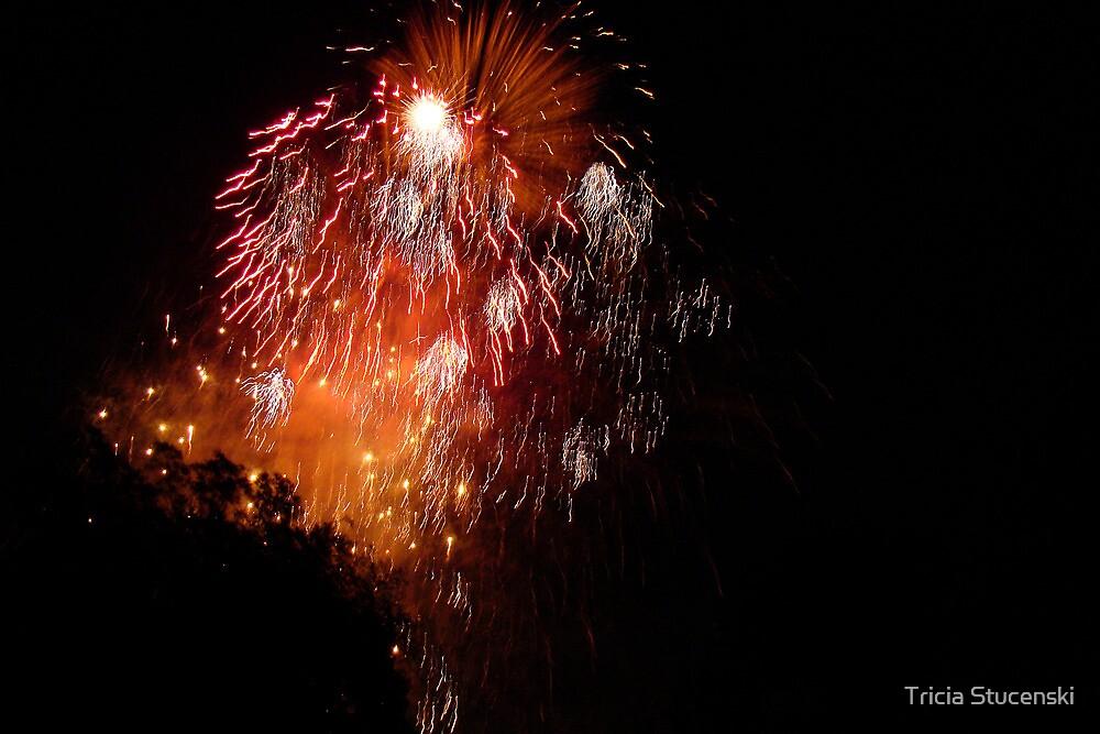 Fireworks by Tricia Stucenski