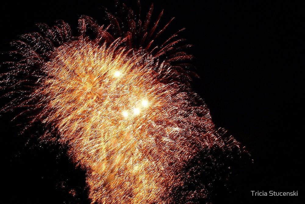 Fireworks III by Tricia Stucenski