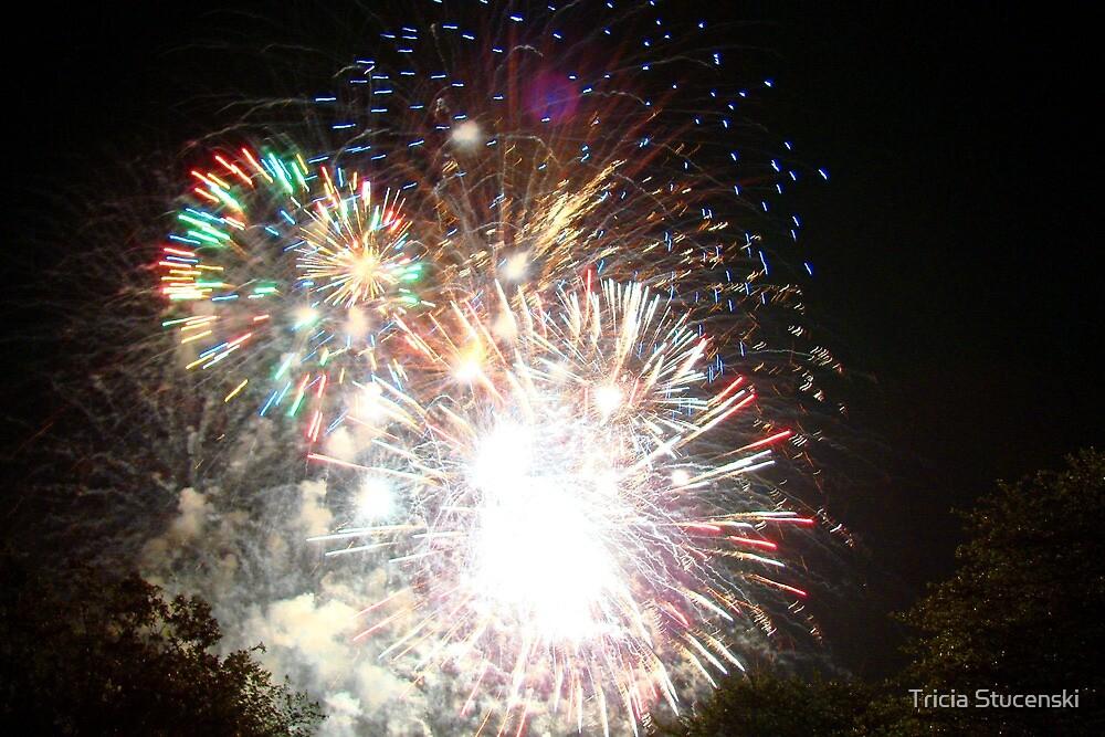 Fireworks IV by Tricia Stucenski